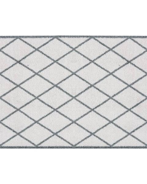 Zala Living Sivá rohožka Zala Living Scale, 50×70 cm