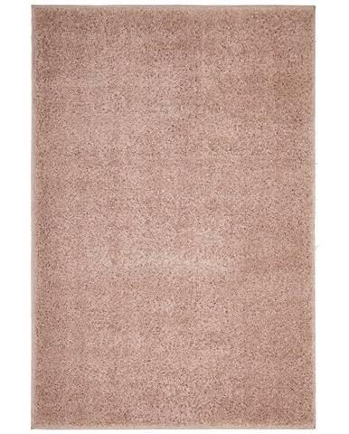 koberec s Vysokým Vlasom Bono 100x150cm
