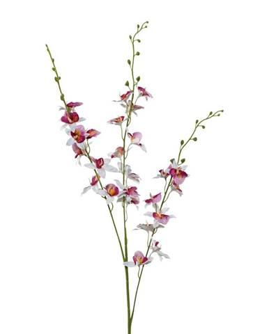 Orchidea 3018125mm-81