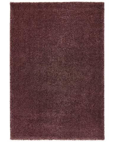 Tkaný Koberec Rubin 1, 80/150cm, Fialová