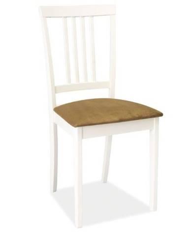 Signal Jedálenská stolička CD-63