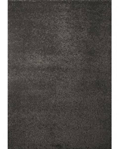 ASKO - NÁBYTOK Koberec Shaggy 80x150 cm, šedý%