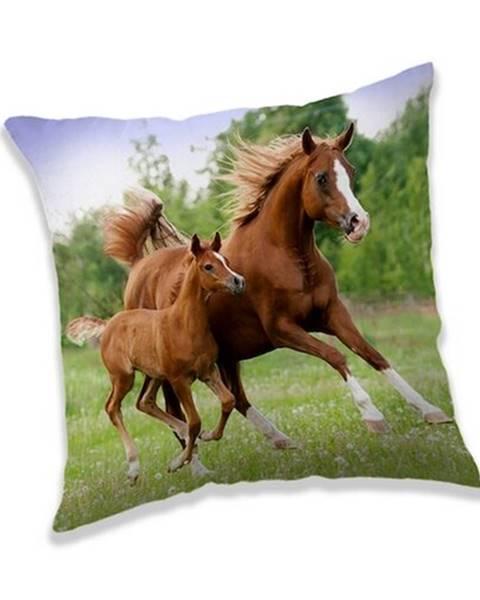 Jerry Fabrics Jerry Fabrics Vankúšik Horse brown, 40 x 40 cm