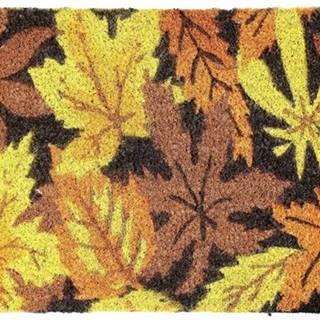 Rohožka Listy