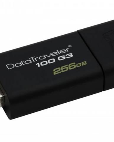 USB kľúč 256GB Kingston DT 100 G3, 3.0