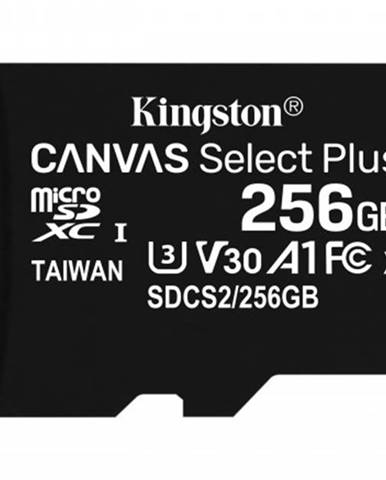 256GB microSDXC Kingston Canvas Select Plus A1 CL10 100MB/s