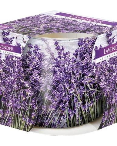 Vonná sviečka v skle Lavender 100 g, 7,2 cm
