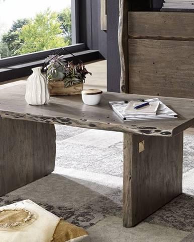 WOODLAND Konferenčný stolík 120x60 cm, sivá, akácia