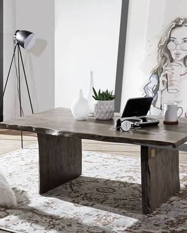 WOODLAND Konferenčný stolík 120x70 cm, sivá, akácia