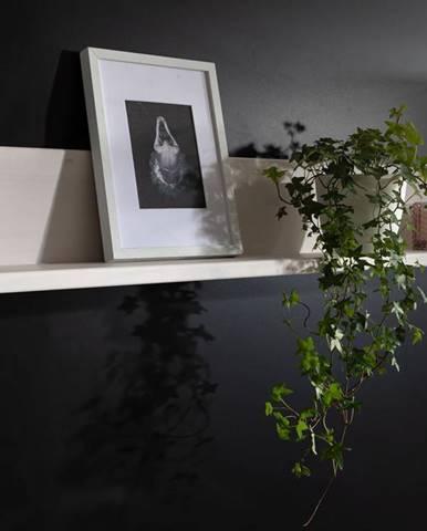 ALBURY Polica 110x19 cm, borovica, biela