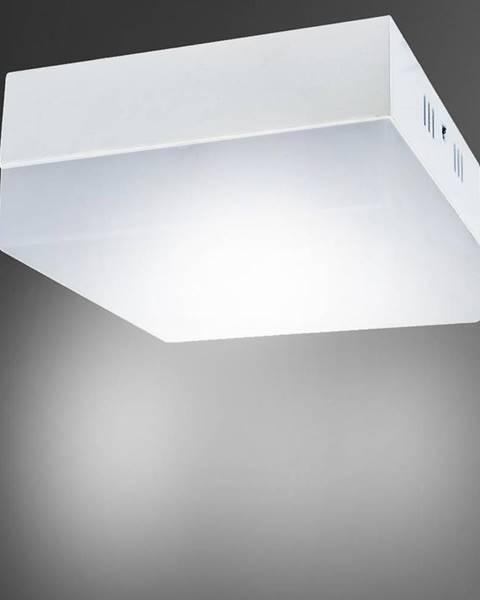 MERKURY MARKET Stropné svietidló Robin LED D 24W 03092