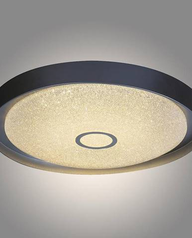Stropná lampa 2297 LED 22W D40 PL