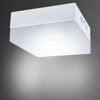 Stropné svietidló Robin LED D 24W 03092