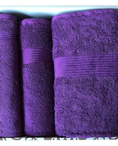 Sada uterákov frotte 3cz. fialová (650 GSM)