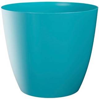 Obal Ella lesk 15 cm blue