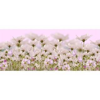 Dekor sklenený Biele kvety 1 20/50