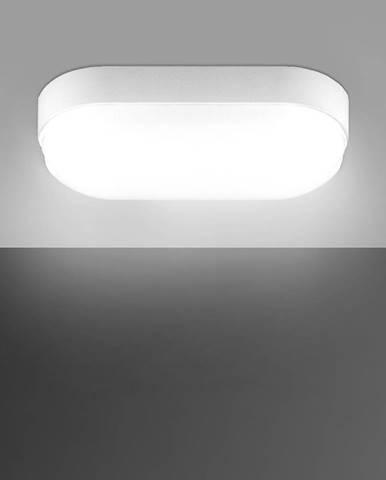 Stropné svietidlo Markus LED L 5W 4500K 03508