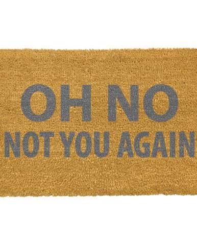 Rohožka z prírodného kokosového vlákna Artsy Doormats Oh No Not You Again Grey, 40 x 60 cm