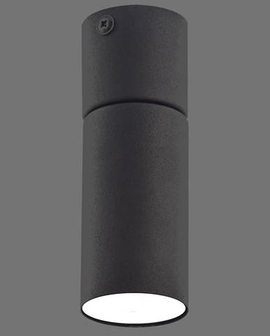 Luster Logan black 4426 K1