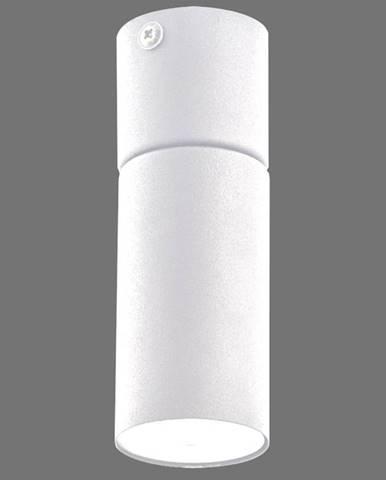 Luster Logan white 4421 K1