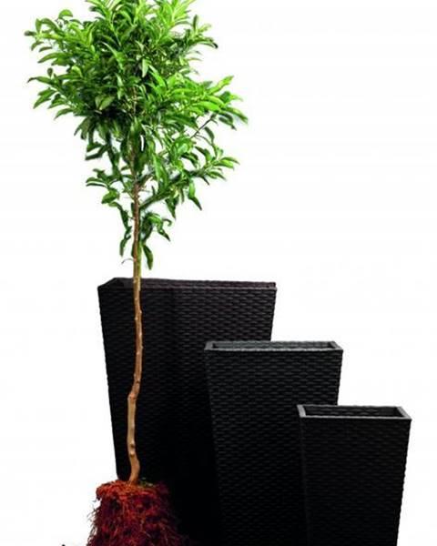 ArtRoja ArtRoja Rattan planter M - grafit
