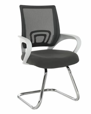 Zasadacia stolička sivá/biela SANAZ TYP 3