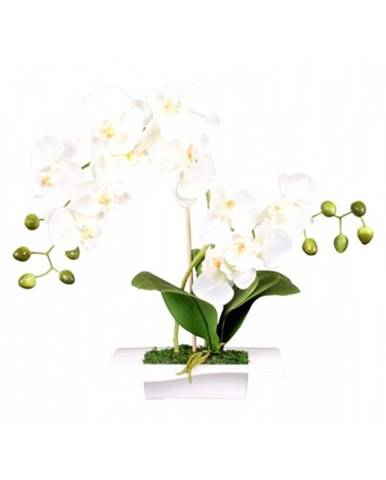 Umelá orchidea v miske 14 kvetov, 45 cm, biela