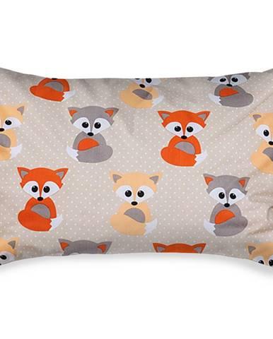 4home Obliečka na vankúšik Little Fox, 50 x 70 cm