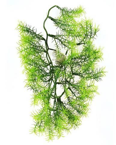 Umelá kvetina Asparagus, 40 cm