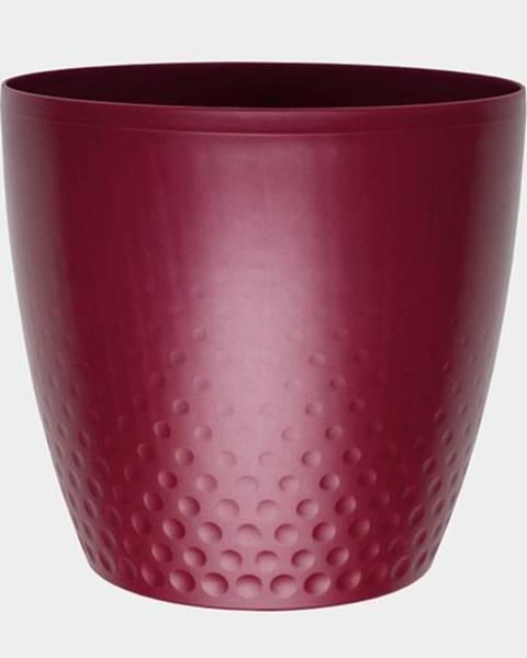 Plastia Plastový kvetináč Perla 16 cm, vínová, Plastia