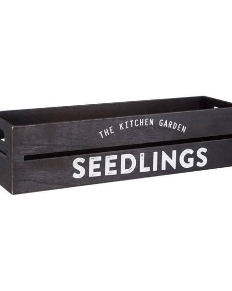 Premier Housewares Čierny drevený črepník na bylinky a kvetiny Premier Housewares Seedligngs, 15×45 cm