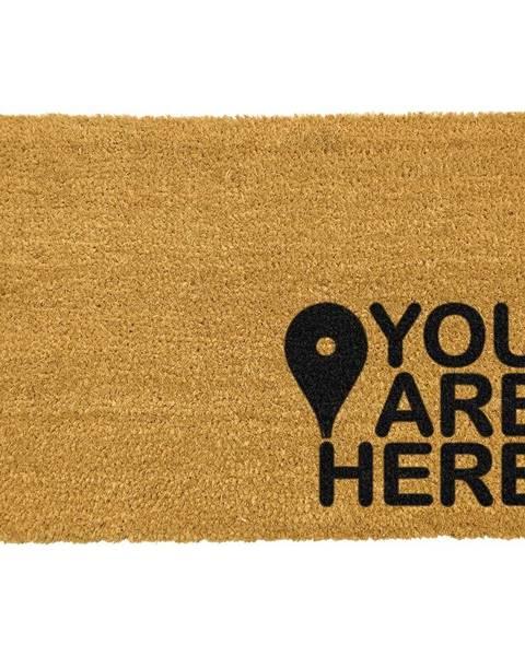 Artsy Doormats Čierna rohožka z prírodného kokosového vlákna Artsy Doormats You Are, 40 x 60 cm