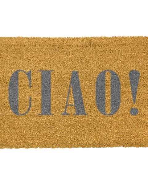 Artsy Doormats Rohožka z prírodného kokosového vlákna Artsy Doormats Ciao Grey, 40 x 60 cm