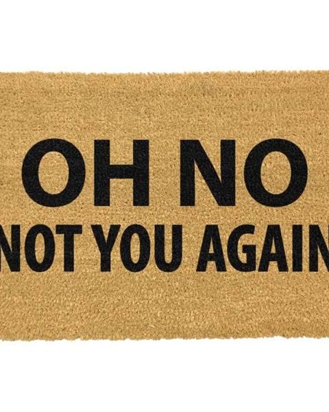 Artsy Doormats Rohožka z prírodného kokosového vlákna Artsy Doormats Not You Again, 40 x 60 cm