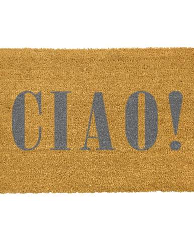 Rohožka z prírodného kokosového vlákna Artsy Doormats Ciao Grey, 40 x 60 cm