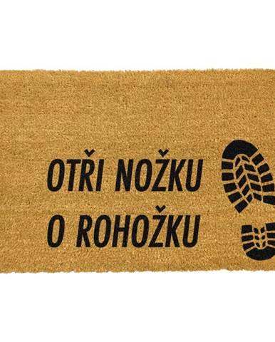 Rohožka z prírodného kokosového vlákna Artsy Doormats Otři Nožku, 40 x 60 cm