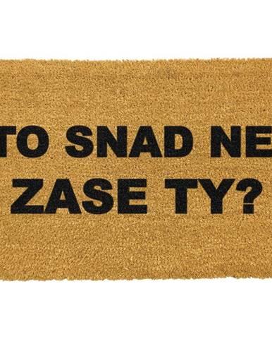 Rohožka z prírodného kokosového vlákna Artsy Doormats Zase ty?, 40 x 60 cm