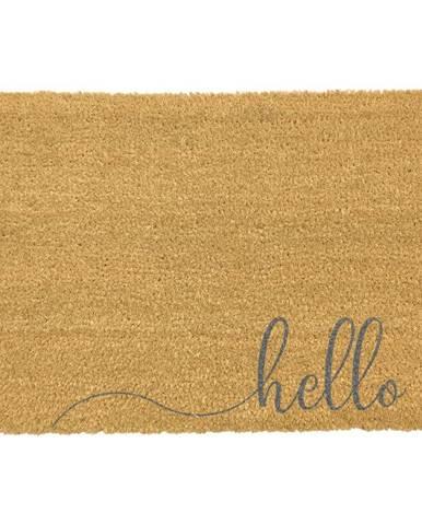 Sivá rohožka z prírodného kokosového vlákna Artsy Doormats Hello Scribble, 40 x 60 cm