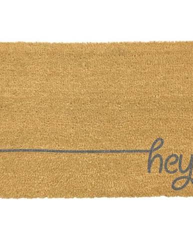 Sivá rohožka z prírodného kokosového vlákna Artsy Doormats Hey Scribble, 40x60cm