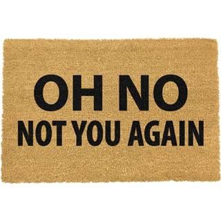 Rohožka z prírodného kokosového vlákna Artsy Doormats Not You Again, 40 x 60 cm