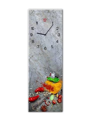 Nástenné hodiny Styler Glassclock Silver Spoon, 20×60 cm