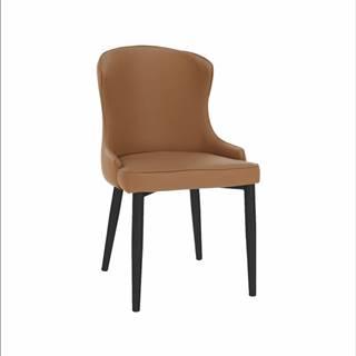 Jedálenská stolička hnedá/čierna SIRENA