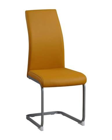 Jedálenská stolička horčicová/sivá NOBATA