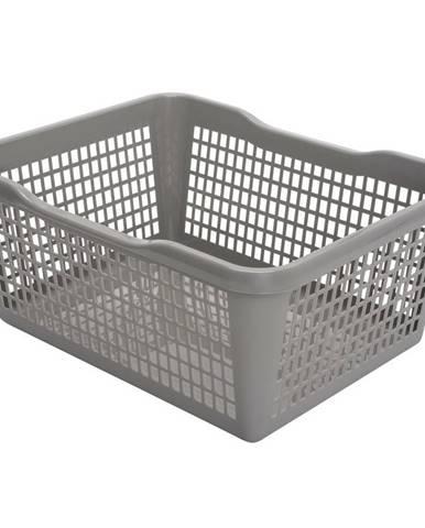 Aldo Plastový košík 29,8 x 19,8 x 9,8 cm, sivá