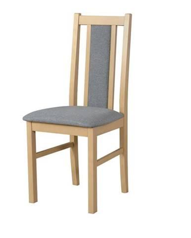Jedálenská stolička BOLS 14 svetlosivá/dub sonoma