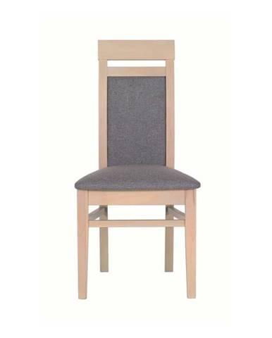 Jedálenská stolička ALEX AX13 tuja/sivá
